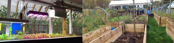 aquagarden at Todmorden and Incredible Farm