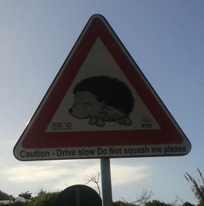 Hedgehog sign