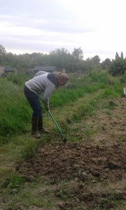 Linda hoeing our new growing space