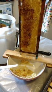 Extracting honey from a fresh comb