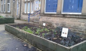the iconic police station vegetable beds, Todmorden