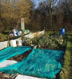The Resilience Allotment