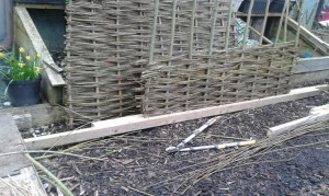 Learn to make willow fencing!