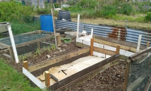 Disposable raised beds