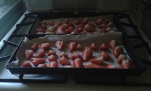 dehydrating strawberries 2017