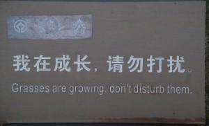Chinese translation of Keep off the Grass
