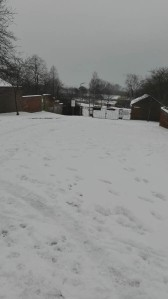 school snow march 18