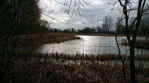 towntree lake vista feb18